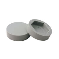 Bolt Protection Cap - Compatible Bolt Size - 8 mm | 0.313 in; Distance Across Flats - 19.1 mm | 0.750 in; Push Fit; Grey